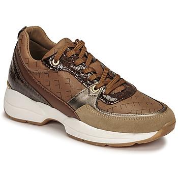Παπούτσια Γυναίκα Χαμηλά Sneakers Fericelli PIRYNA Beige