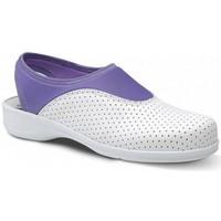 Παπούτσια Γυναίκα Χαμηλά Sneakers Feliz Caminar Zueco Laboral SPORT LYCRA - Multicolour
