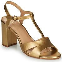 Παπούτσια Γυναίκα Σανδάλια / Πέδιλα Cosmo Paris ZOUM Gold