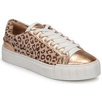 Παπούτσια Γυναίκα Χαμηλά Sneakers Vanessa Wu LEVANTER Leopard