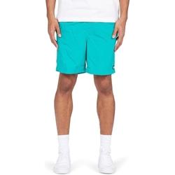 Υφασμάτινα Άνδρας Σόρτς / Βερμούδες DC Shoes Late Daze 18 Πράσινος