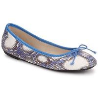 Παπούτσια Γυναίκα Μπαλαρίνες Koah GAME Μπλέ