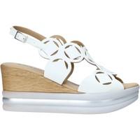 Παπούτσια Γυναίκα Σανδάλια / Πέδιλα IgI&CO 7179033 λευκό