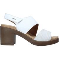 Παπούτσια Γυναίκα Σανδάλια / Πέδιλα IgI&CO 7170244 λευκό