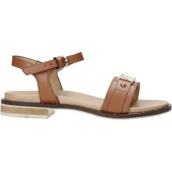 Παπούτσια Γυναίκα Σανδάλια / Πέδιλα Alviero Martini E084 8578 καφέ
