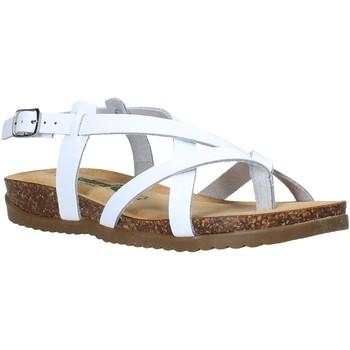 Παπούτσια Γυναίκα Σανδάλια / Πέδιλα Bionatura 34A2005-I-BYCBIA λευκό