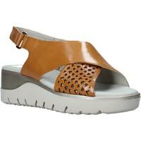 Παπούτσια Γυναίκα Σανδάλια / Πέδιλα CallagHan 26508 καφέ