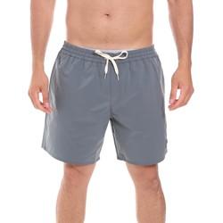 Υφασμάτινα Άνδρας Μαγιώ / shorts για την παραλία Colmar 7248 6TL Γκρί