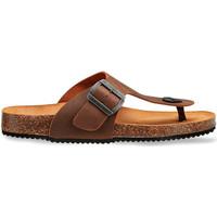 Παπούτσια Άνδρας Σανδάλια / Πέδιλα Docksteps DSM228401 καφέ