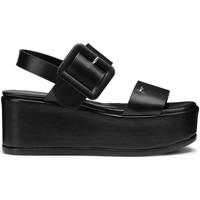 Παπούτσια Γυναίκα Σανδάλια / Πέδιλα Alberto Guardiani AGW003105 Μαύρος