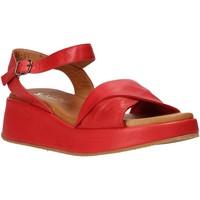 Παπούτσια Γυναίκα Σανδάλια / Πέδιλα Sshady L2402 το κόκκινο