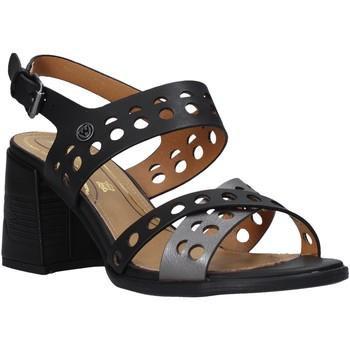 Παπούτσια Γυναίκα Σανδάλια / Πέδιλα Wrangler WL01572A Μαύρος