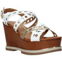 Παπούτσια Γυναίκα Σανδάλια / Πέδιλα Wrangler WL01570A λευκό