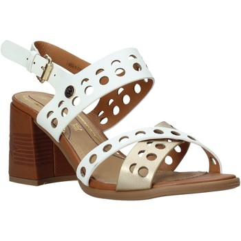 Παπούτσια Γυναίκα Σανδάλια / Πέδιλα Wrangler WL01572A λευκό