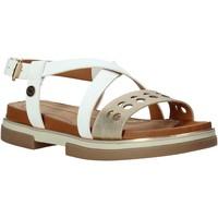 Παπούτσια Γυναίκα Σανδάλια / Πέδιλα Wrangler WL01573A λευκό
