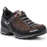 Παπούτσια Γυναίκα Fitness Salewa WS MTN Trainer 61358-0991