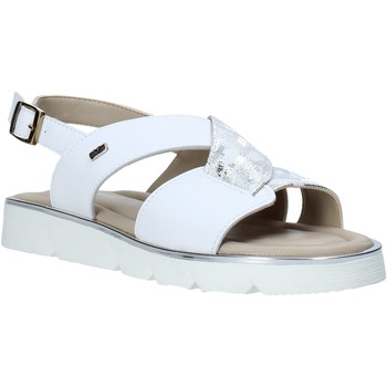 Παπούτσια Γυναίκα Σανδάλια / Πέδιλα Valleverde 32120 λευκό