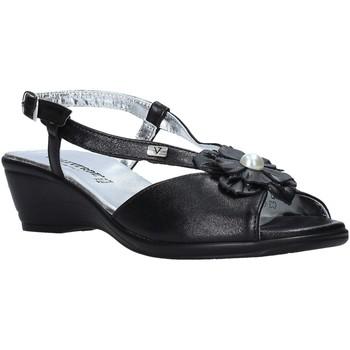 Παπούτσια Γυναίκα Σανδάλια / Πέδιλα Valleverde 33103 Μαύρος