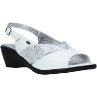 Παπούτσια Γυναίκα Σανδάλια / Πέδιλα Valleverde 33105 λευκό