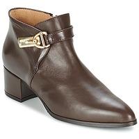 Παπούτσια Γυναίκα Χαμηλές Μπότες Marian MARINO Brown