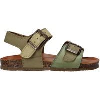Παπούτσια Παιδί Σανδάλια / Πέδιλα Bionatura LUCA Πράσινος