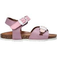 Παπούτσια Κορίτσι Σανδάλια / Πέδιλα Bionatura CHIARA Ροζ