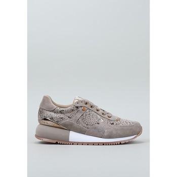 Παπούτσια Γυναίκα Χαμηλά Sneakers Gioseppo, S.l.  Beige