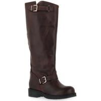 Παπούτσια Γυναίκα Μπότες για την πόλη Priv Lab MORO STIVALE Marrone