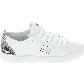 Xαμηλά Sneakers TBS Pandorra Blanc [COMPOSITION_COMPLETE]