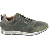Παπούτσια Χαμηλά Sneakers Bullboxer Sneaker 53AGNGR Vert Green