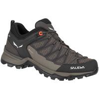Παπούτσια Γυναίκα Πεζοπορίας Salewa Mtn Trainer Lite GTX 61362-7517 black, brown