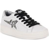Παπούτσια Γυναίκα Χαμηλά Sneakers Sun68 SUN68 0144 BETTY Bianco