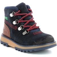 Παπούτσια Αγόρι Μπότες Kickers Chaussures enfant  Kicknature marine/rouge