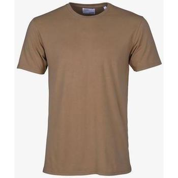 Υφασμάτινα T-shirt με κοντά μανίκια Colorful Standard T-shirt  Sahara Camel marron