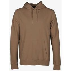 Υφασμάτινα Φούτερ Colorful Standard Sweatshirt à capuche  Sahara Camel marron clair