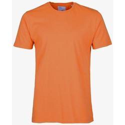 Υφασμάτινα T-shirt με κοντά μανίκια Colorful Standard T-shirt  Burned Orange orange