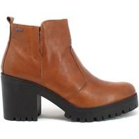 Παπούτσια Γυναίκα Μποτίνια IgI&CO 8169233 καφέ