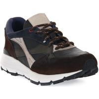 Παπούτσια Άνδρας Multisport Exton COMBI 5 TERRA Marrone