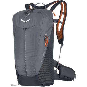 Τσάντες Σακίδια πλάτης Salewa MTN Trainer 25 1232-0452 grey