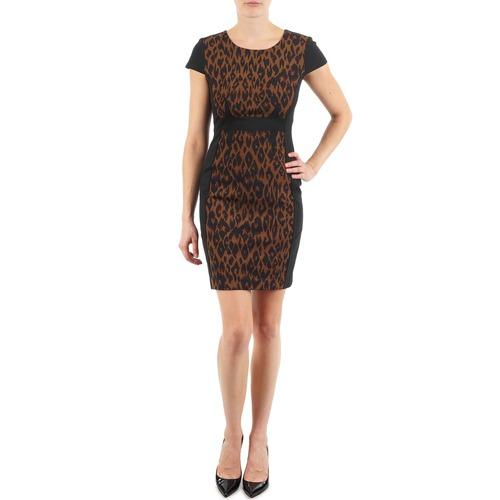 Υφασμάτινα Γυναίκα Κοντά Φορέματα Manoukian EMMA Black / Leopard