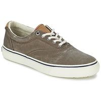 Παπούτσια Άνδρας Χαμηλά Sneakers Sperry Top-Sider STRIPER CVO Σοκολά