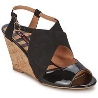 Παπούτσια Γυναίκα Σανδάλια / Πέδιλα Chocolate Schubar ELVINA Black