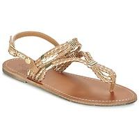 Παπούτσια Γυναίκα Σανδάλια / Πέδιλα Pepe jeans JANE WOVEN METALLIC Brown