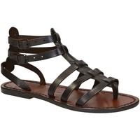 Παπούτσια Γυναίκα Σανδάλια / Πέδιλα Gianluca - L'artigiano Del Cuoio 506 D MORO CUOIO Testa di Moro