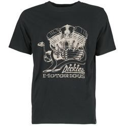 Υφασμάτινα Άνδρας T-shirt με κοντά μανίκια Dickies BRIDGEVILLE Black