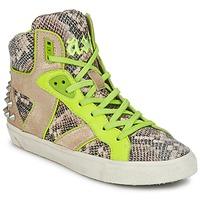 Παπούτσια Γυναίκα Ψηλά Sneakers Ash SONIC Python / Yellow