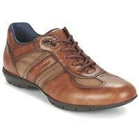 Παπούτσια Άνδρας Derby Lloyd ARMAND COGNAC