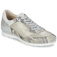 Παπούτσια Γυναίκα Χαμηλά Sneakers Mjus FORCE Serpent / Argenté
