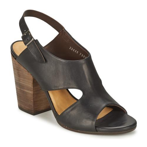 Παπούτσια Γυναίκα Σανδάλια / Πέδιλα Coclico CASPAR Black