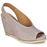 Παπούτσια Γυναίκα Σανδάλια / Πέδιλα Coclico NELS Violet /  CLAIR